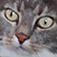 [HAMA] Kabi
